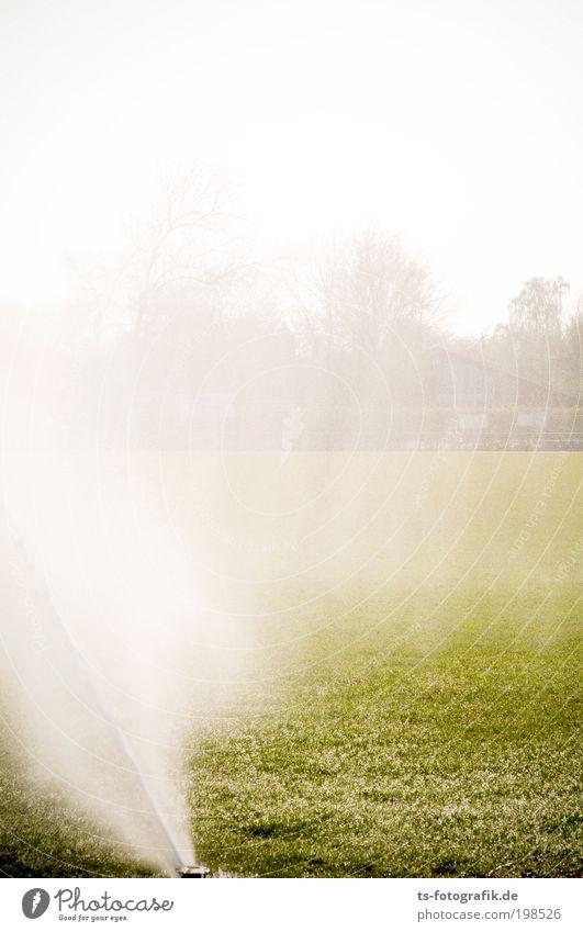 Rasenballett II Tribüne Sportstätten Fußballplatz Wasser Wassertropfen Sonne Frühling Sommer Schönes Wetter Nebel Regen Wärme Dürre Gras Sportrasen Bewässerung