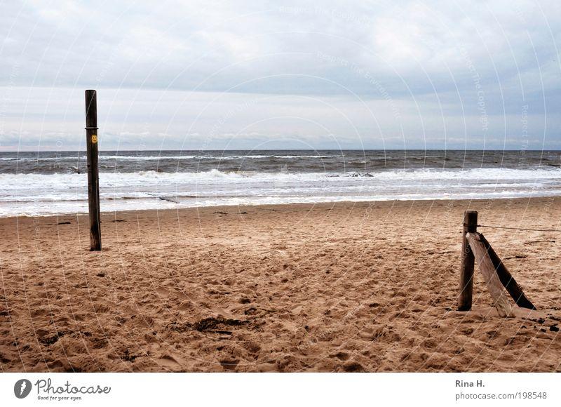 Saisonende IV Natur Himmel blau Ferien & Urlaub & Reisen Wolken gelb kalt Erholung Herbst Freiheit Sand Landschaft Luft Zufriedenheit Stimmung braun