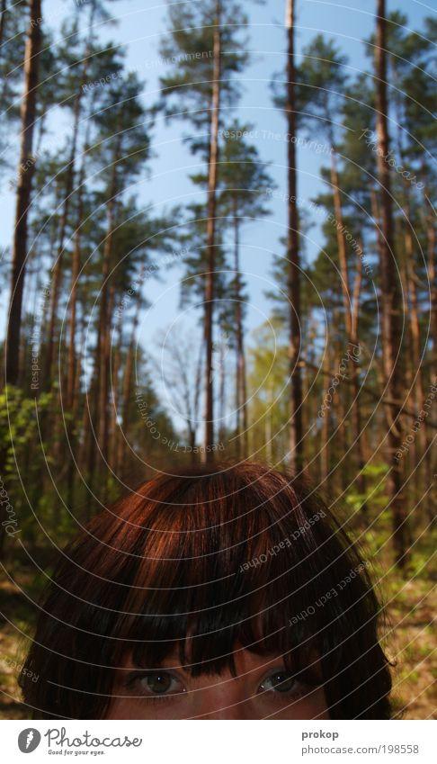 WAS IST WAS? - Die Urzeit Mensch feminin Junge Frau Jugendliche Erwachsene Kopf Haare & Frisuren Auge Umwelt Natur Landschaft Pflanze Himmel Sonne