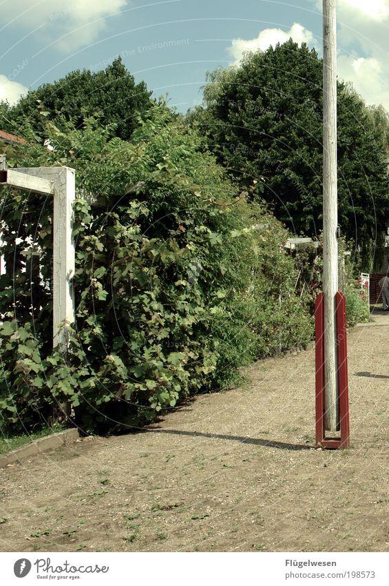 Fahnenflucht Himmel Natur Baum Freizeit & Hobby Lifestyle Sträucher Leidenschaft Garten eckig Fahnenmast Tatkraft Blumenbeet