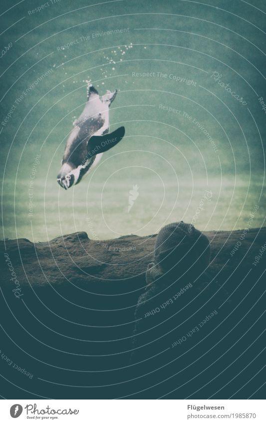 """Gemälde """"Blickkontakt"""" Mensch Kind Ferien & Urlaub & Reisen Tier Tierjunges Kindheit Kindheitserinnerung Fisch entdecken Schwimmsport Kleinkind Zoo Aquarium"""