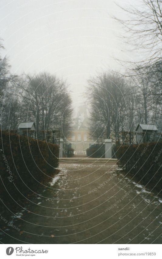*einsam*kalt* Baum ruhig Einsamkeit Garten Wege & Pfade Nebel historisch Mühle