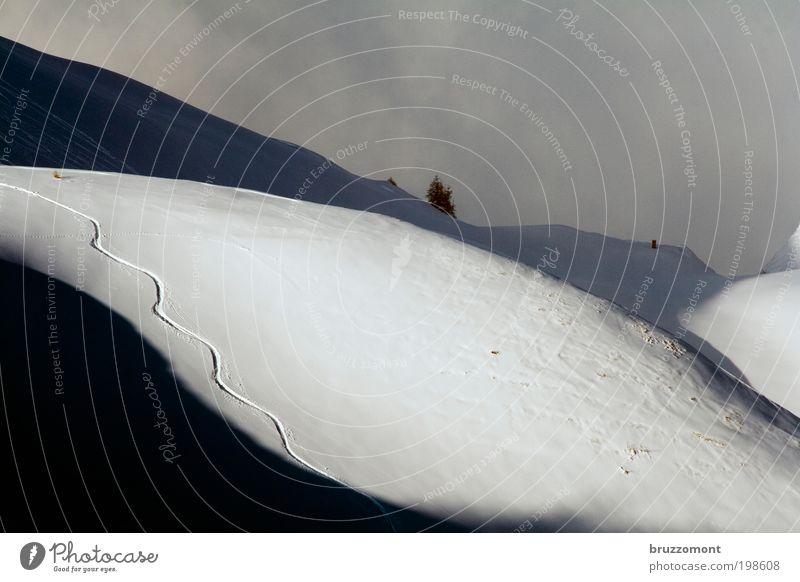 the early birds worm Natur Ferien & Urlaub & Reisen Landschaft Freude Winter Berge u. Gebirge Schnee Sport Glück Alpen Spuren Wintersport Winterurlaub Freestyle Skipiste Morgen