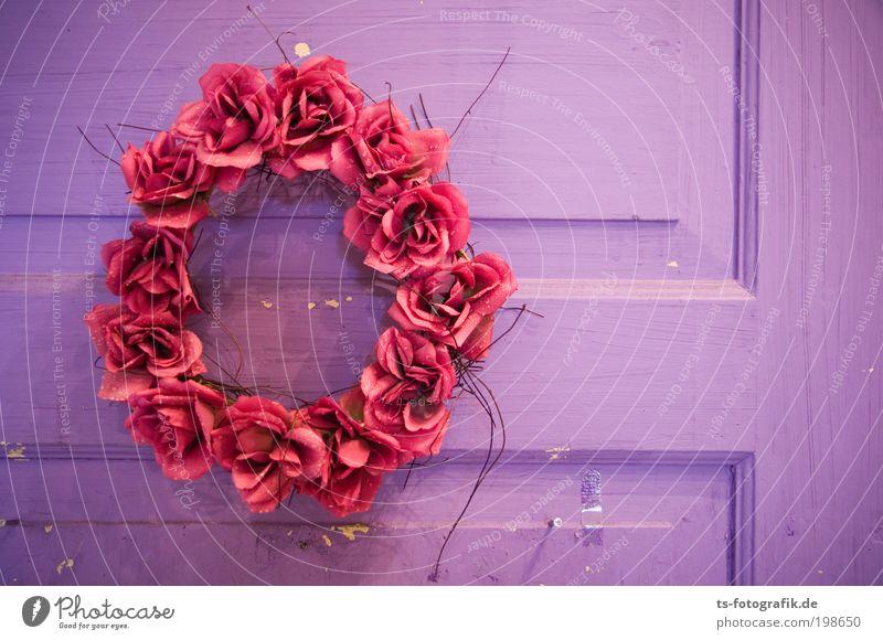 *** 100 *** Freude Glück Häusliches Leben Wohnung Haus Umzug (Wohnungswechsel) Innenarchitektur Dekoration & Verzierung Kranz Rose Rosenblätter Kunstblume Tür