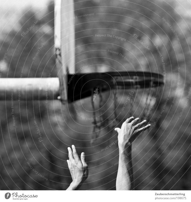 Wo ist der Ball? Sport Arme Hand Finger Bewegung werfen sportlich Erfolg Kraft Tatkraft Leidenschaft diszipliniert ästhetisch Erwartung Kontrolle Konzentration