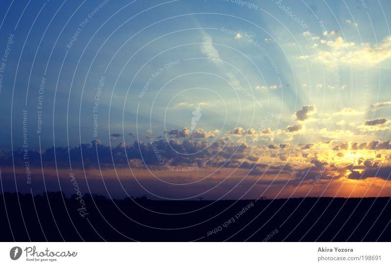 Daylight speaks to me Landschaft Himmel Wolken Horizont Sonne Sonnenaufgang Sonnenuntergang Sonnenlicht ästhetisch außergewöhnlich blau gelb rot schwarz