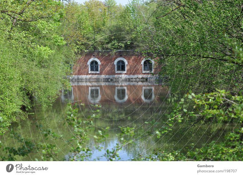Spiegelverkehrt Natur Wasser Baum Pflanze ruhig Tier Erholung Gefühle Frühling Park Gebäude Landschaft Stimmung Romantik Sträucher Freizeit & Hobby