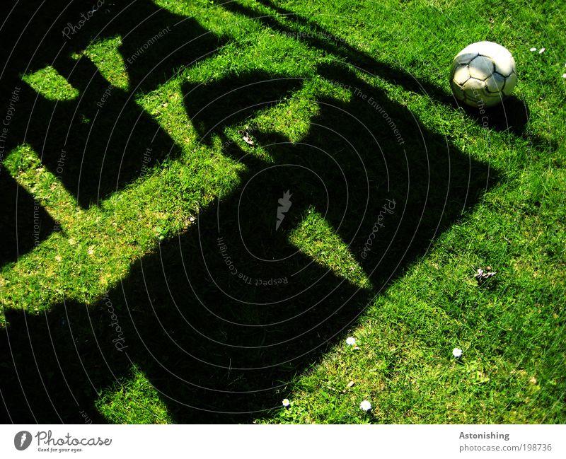 Schatten und Ball Freizeit & Hobby Spielen Ballsport Fußball Pflanze Erde Sommer Gras Garten Bekleidung T-Shirt hängen dunkel rund grün schwarz Tracht Wäsche