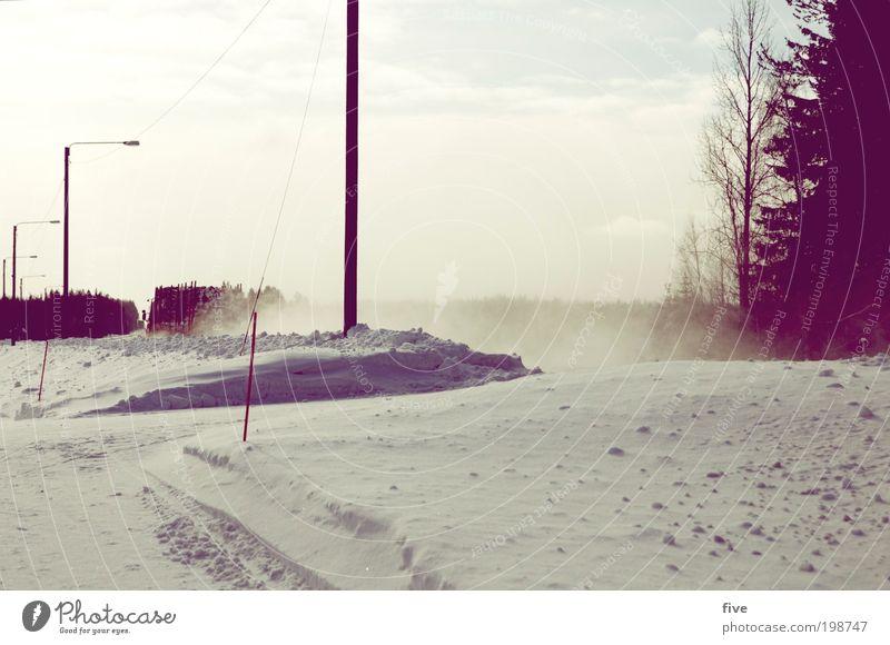 luosto XVII Himmel Natur Baum Pflanze Ferien & Urlaub & Reisen Winter Ferne Straße kalt Schnee Freiheit Wege & Pfade Ausflug Verkehr Lastwagen Verkehrswege
