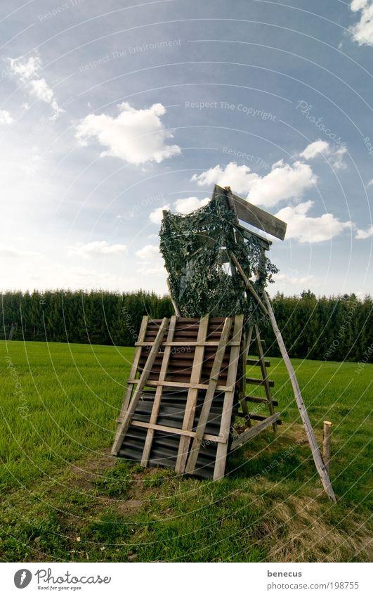 Auf der Pirsch Natur Himmel grün blau Wolken Gras Frühling Landschaft Feld Freizeit & Hobby beobachten Jagd verstecken Wachsamkeit Schönes Wetter Versteck
