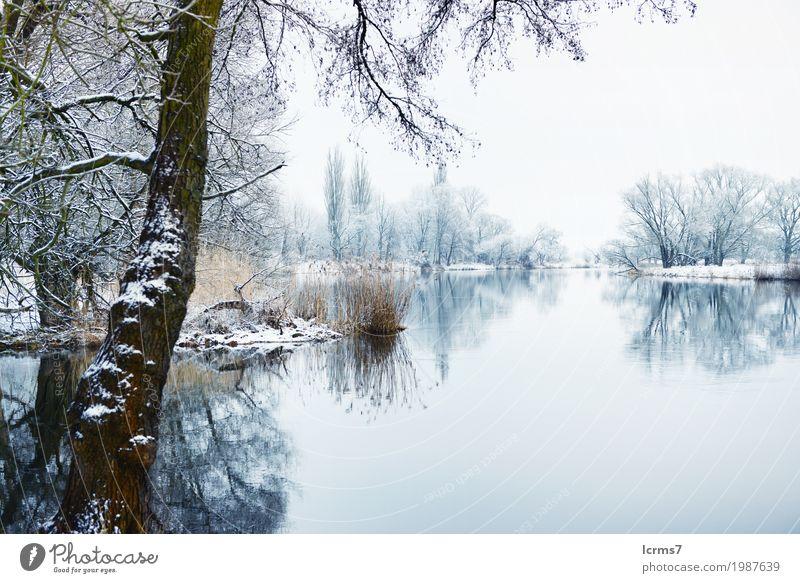 Winter landscape on Havel River (Germany) Natur Ferien & Urlaub & Reisen blau Wasser Deutschland Europa Frost Flussufer Schnellzug Brandenburg