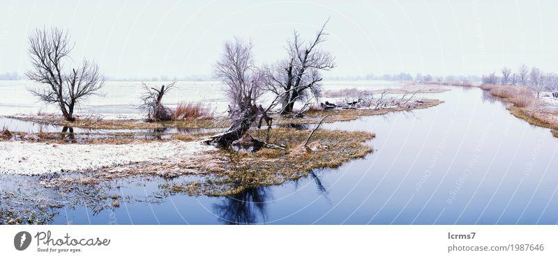 Winter landscape on Havel River (Germany). Havelland Ferien & Urlaub & Reisen Tourismus Ausflug Abenteuer Natur Klima Wetter Schönes Wetter blau snow river