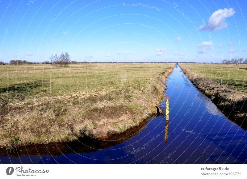 Transformation Natur Himmel blau Winter Erholung Herbst Wiese Gras Frühling Landschaft Luft Feld Horizont Erde trist Zukunft