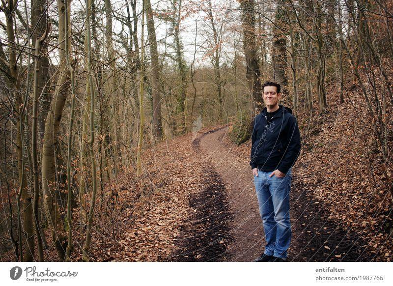 Naturbursche Ausflug maskulin Mann Erwachsene Partner Leben Körper 1 Mensch 30-45 Jahre Frühling Herbst Baum Wald Fußweg Wege & Pfade Laubwald Laubbaum