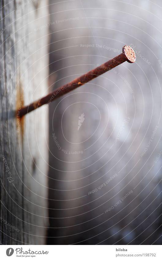Aufhänger Arbeit & Erwerbstätigkeit Beruf Handwerker Gartenarbeit Arbeitsplatz Baustelle Industrie Karriere Sitzung Stahl alt braun rot schwarz Nagel nageln