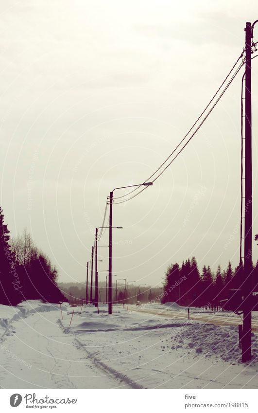 luosto XVIII Himmel Natur Ferien & Urlaub & Reisen Baum Pflanze Winter Wolken Ferne Straße kalt Schnee Freiheit Wege & Pfade Eis Verkehr Ausflug