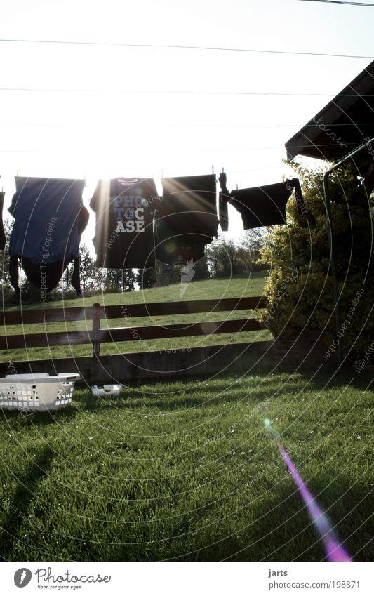 alles frisch Stil Sonne Garten Wiese Bekleidung T-Shirt Sauberkeit Wäsche Wäscheleine Wäschekorb wäsche trocknen Photocase jats Farbfoto Außenaufnahme