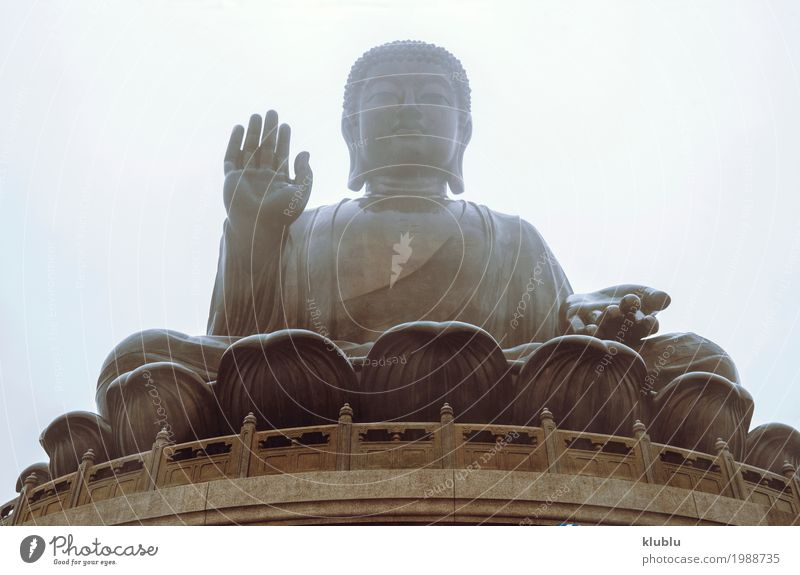 Große Buddha-Statue Meditation Kunst Kultur Architektur alt groß Religion & Glaube Himmelstempel Tempel Buddhismus Asien antik buddhistisch Bildhauerei