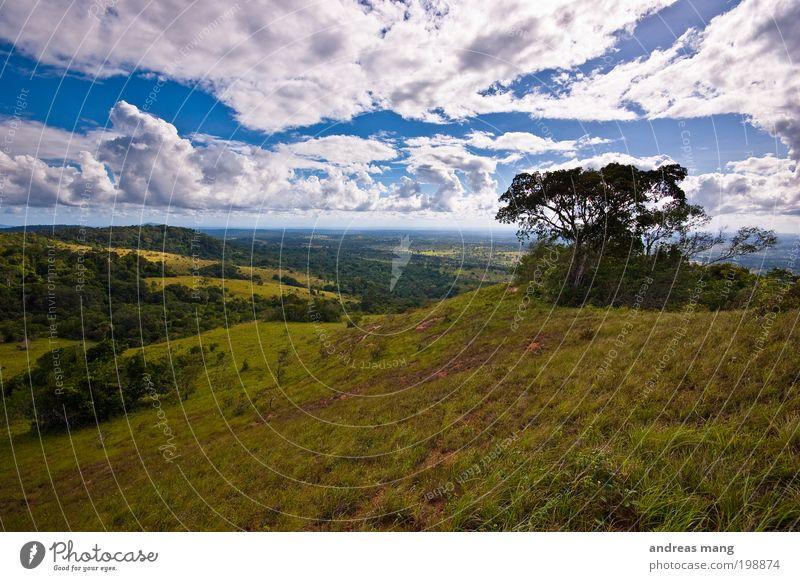 Weites Land Himmel Natur blau Baum Ferien & Urlaub & Reisen Wolken Ferne Wald Freiheit Berge u. Gebirge Landschaft Umwelt Gras Park Horizont Tourismus