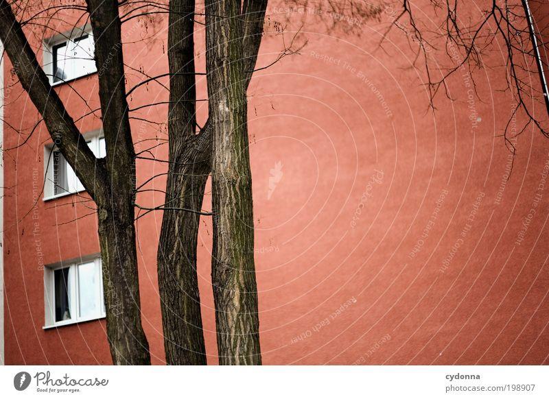 [HAL] Ich seh rot Stadt Baum rot ruhig Einsamkeit Haus Leben Wand Fenster Freiheit Umwelt Architektur träumen Mauer Zeit Wohnung