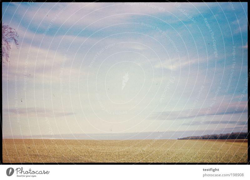 let´s move to the country Natur Himmel Baum Pflanze ruhig Wolken Ferne Herbst Freiheit Wärme Landschaft Feld Wetter Horizont weich Lomografie