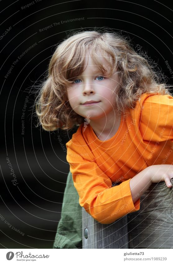 ;) Kind Junge Kindheit 1 Mensch 3-8 Jahre blond langhaarig Locken Blick Spielen Freundlichkeit Gesundheit natürlich Neugier orange Interesse