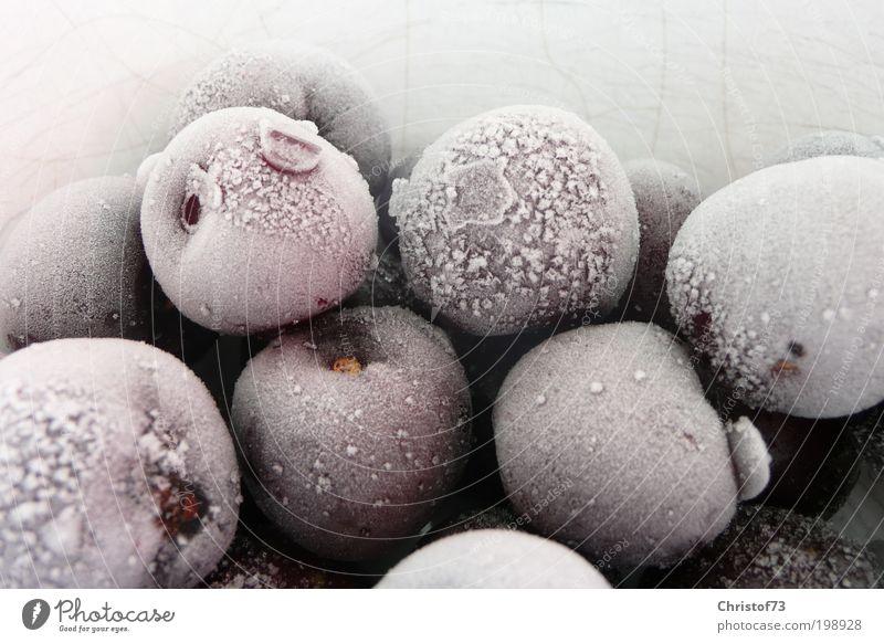 Gefrorene Kirschen weiß ruhig kalt Eis Lebensmittel Wassertropfen Frucht Coolness Frost gefroren Natur frieren Stillleben Bioprodukte Kirsche