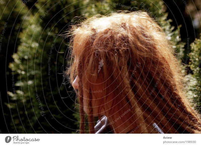 Rotschopfkopf Mensch Jugendliche Pflanze Einsamkeit Leben Erholung feminin Haare & Frisuren Kopf Zufriedenheit Erwachsene sitzen Behaarung einzigartig langhaarig rothaarig