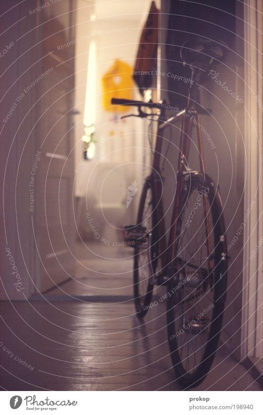 Rad gehts gut. Sonne scheint. Gefühle Stil Stimmung Innenarchitektur Raum Wohnung Zufriedenheit Fahrrad Häusliches Leben Lifestyle Coolness Bad Toilette skurril
