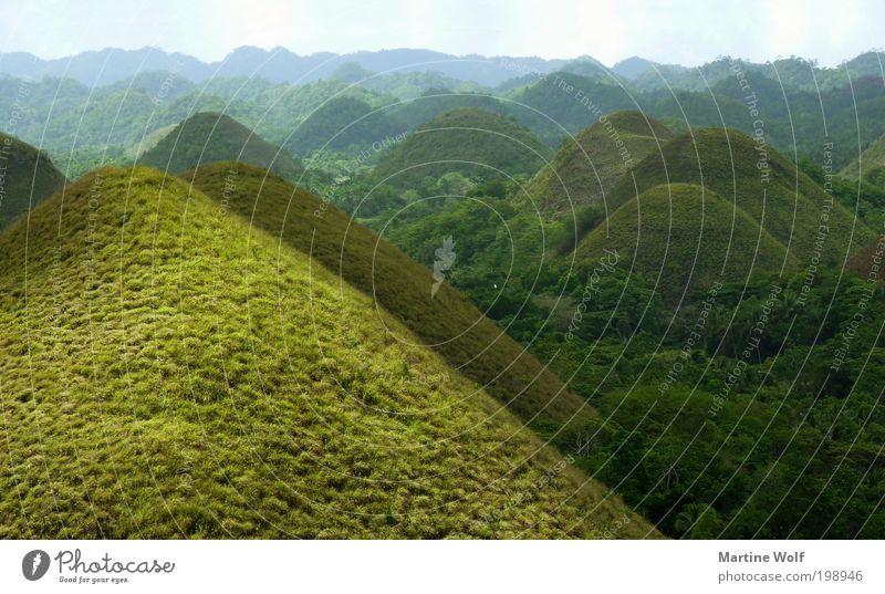 grüne Schokolade Ferien & Urlaub & Reisen Tourismus Ausflug Ferne Sightseeing Berge u. Gebirge Natur Landschaft Gras Hügel Wellen Chocolate Hills Philippinen
