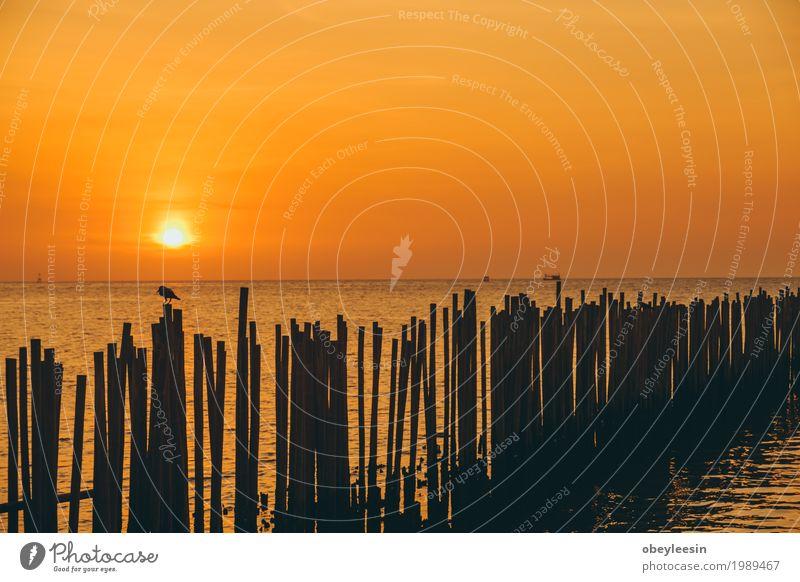 Die Silhouette des Kanus bei Sonnenuntergang Natur Landschaft Meer Freude Strand Lifestyle Stil Kunst Wellen Angst Abenteuer Bucht Künstler