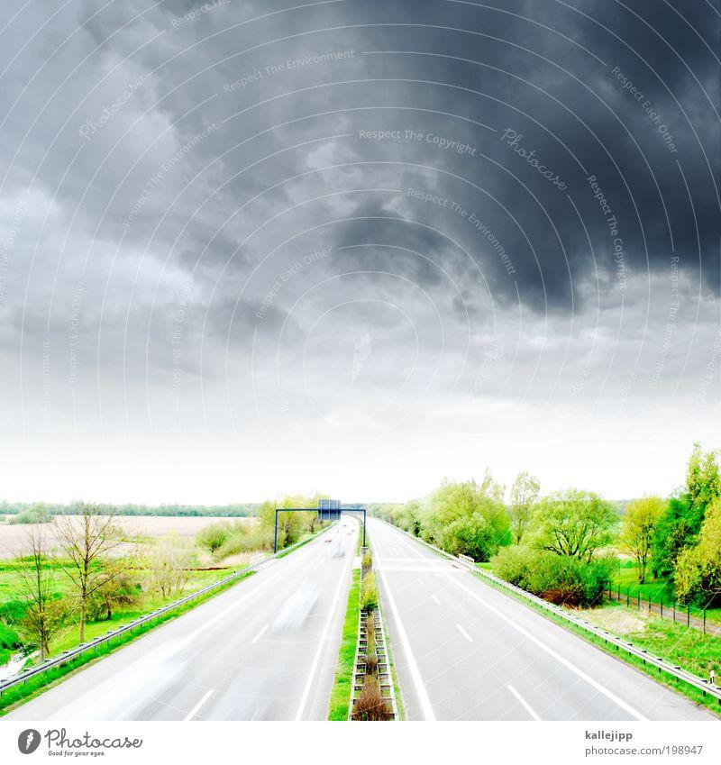hamburg –> 298km Natur Baum Pflanze Ferien & Urlaub & Reisen Wolken Ferne Straße Wiese Gras Freiheit PKW Landschaft Feld Straßenverkehr Wetter Umwelt