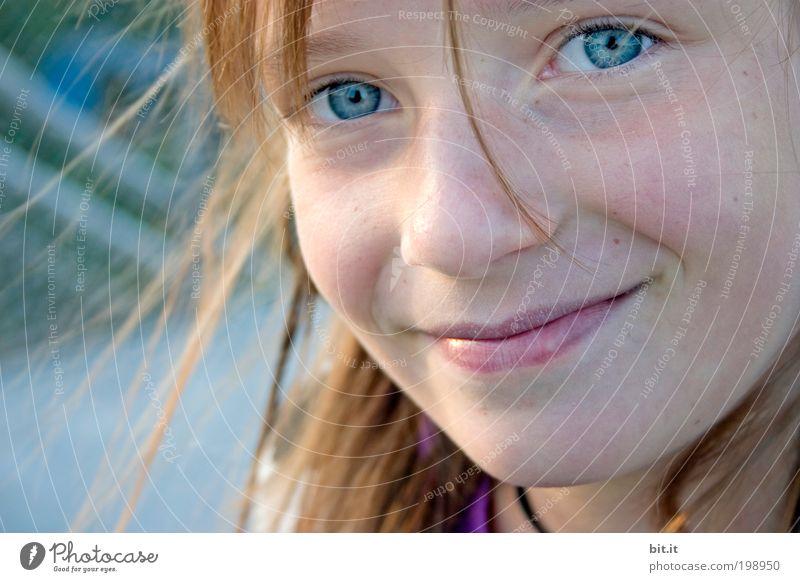 Sommer in Bit.anien Mensch Kind blau Mädchen Freude Gesicht Auge Glück Kopf Zufriedenheit Kindheit natürlich Mund Fröhlichkeit Schönes Wetter