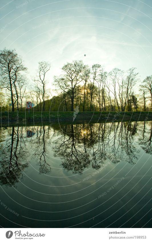 Havel bei Pinnow Natur Brandenburg Erholung Fluss Frühling Havelland Kanal Erholungsgebiet See Reflexion & Spiegelung Baumstamm Küste Seeufer Flussufer Wald
