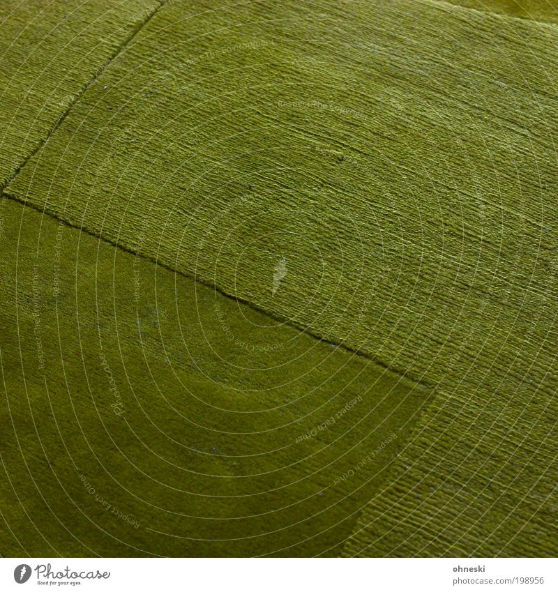 Die Wiese ist grün grün Wiese Raum Wohnung Hoffnung Häusliches Leben Innenarchitektur abstrakt Wohnzimmer Teppich einrichten Perspektive Muster