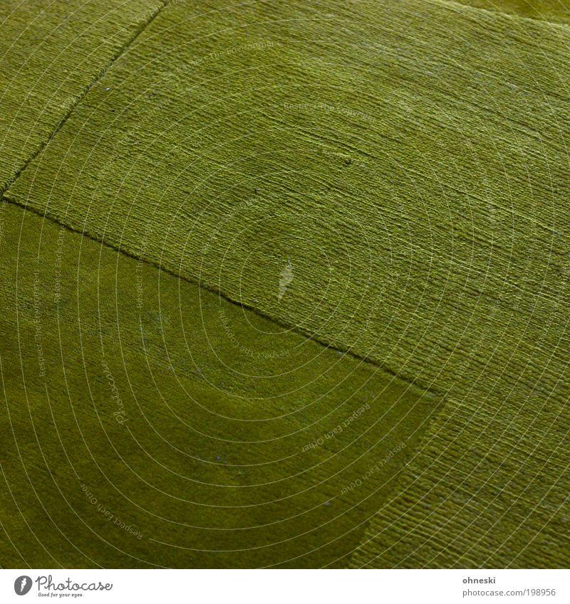 Die Wiese ist grün Häusliches Leben Wohnung einrichten Innenarchitektur Raum Wohnzimmer Teppich Hoffnung Farbfoto Innenaufnahme abstrakt Muster