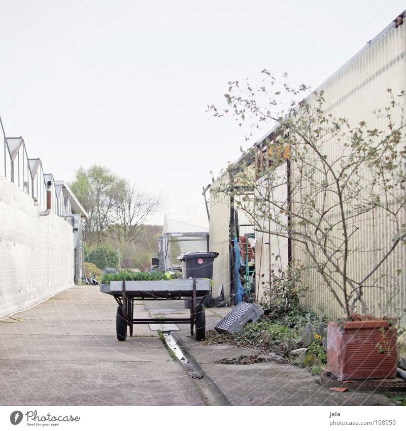 gärtnerei Pflanze Arbeit & Erwerbstätigkeit trist Landwirtschaft Handel Handwerker Arbeitsplatz Gartenarbeit Hof Forstwirtschaft Wagen Gärtnerei