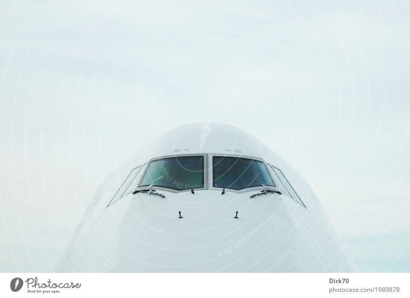 Eierkopf. Ferien & Urlaub & Reisen Ferne kalt Tourismus fliegen Design Verkehr elegant Luftverkehr ästhetisch Technik & Technologie warten groß Flugzeug rund