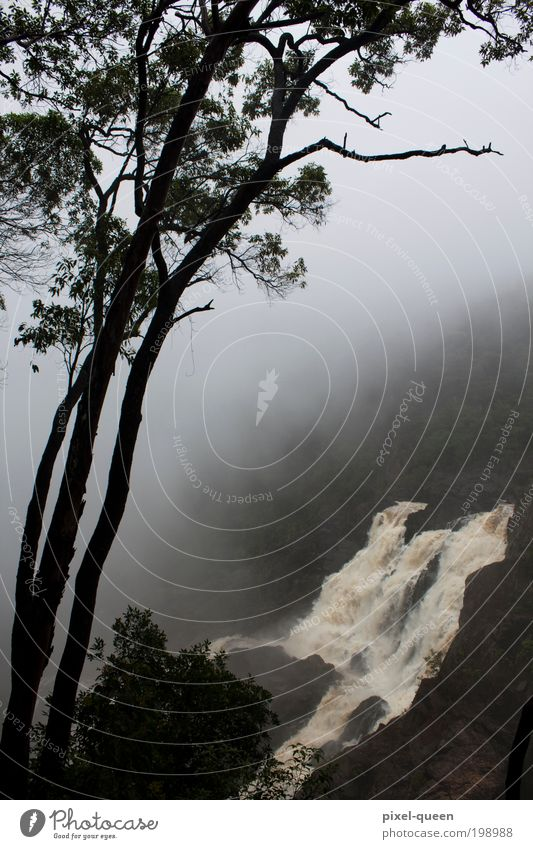 Wasserfall Ferien & Urlaub & Reisen Tourismus Sightseeing Berge u. Gebirge Umwelt Natur Landschaft Wolken Sommer schlechtes Wetter Nebel Baum Wald Urwald blau