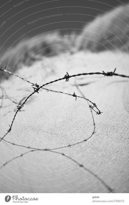 Stacheldraht Natur schwarz grau Traurigkeit Sand Angst trist bedrohlich Zaun gefangen Barriere Aggression stachelig Endzeitstimmung