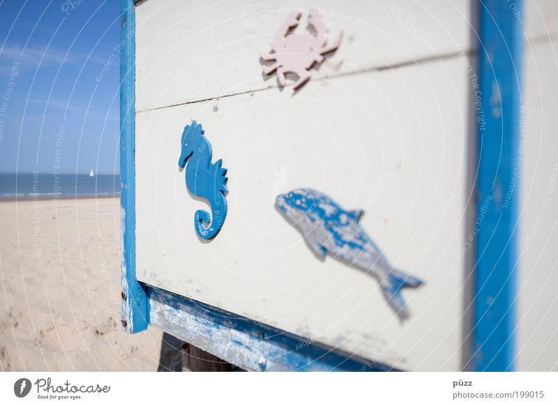 Sommerfrische 1 weiß Sonne Meer blau Strand Ferien & Urlaub & Reisen Ferne Holz Wärme Sand braun Küste Tourismus Lebensfreude Zeichen