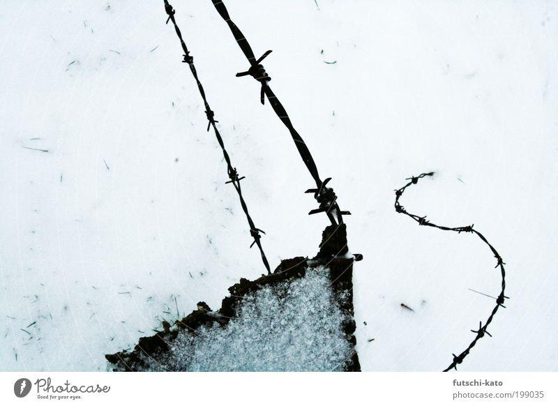 gezwirbelter Stachel Holz Schmerz Stahl Zaun Krieg Schutzschild stachelig