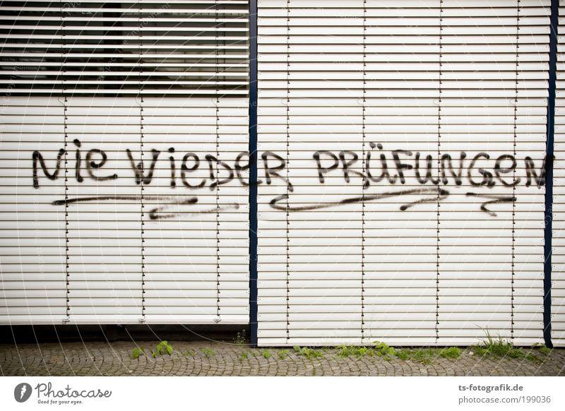 Uni-Stillleben Ferien & Urlaub & Reisen Fenster Wand Graffiti Schule Mauer Angst lernen Studium Kommunizieren Bildung Kunststoff Student Zeichen
