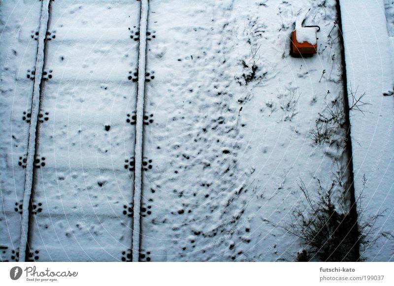 Auf der Strecke Schnee Umwelt Verkehr Industrie Güterverkehr & Logistik Unendlichkeit Gleise beweglich Bewegung Bahnfahren Öffentlicher Personennahverkehr