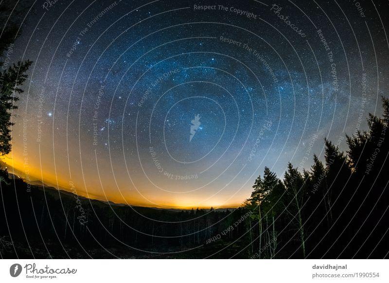Astro-Landschaft im Pfälzerwald Himmel Natur blau Baum Erholung Einsamkeit ruhig Ferne Wald Freiheit Deutschland orange Horizont wandern ästhetisch