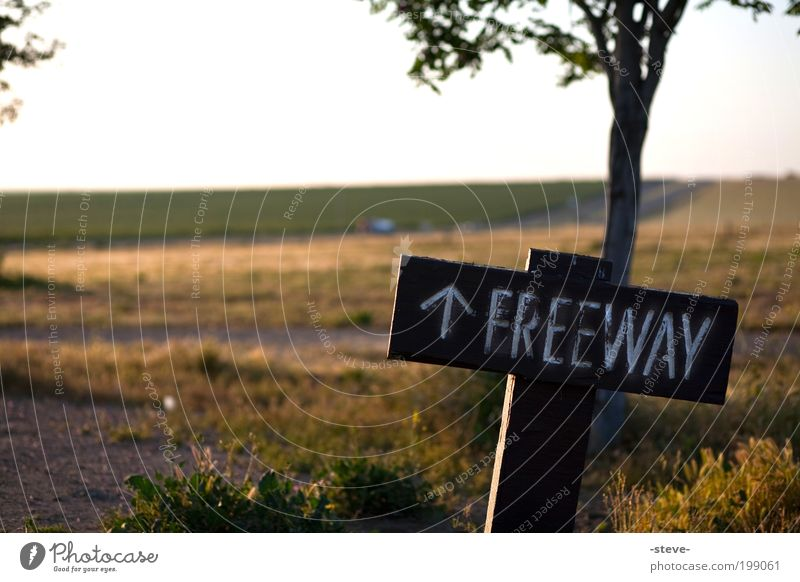 Natur grün gelb Straße Wiese Landschaft frei USA Richtung Morgen Amerika Kalifornien Verkehrsschild Verkehrszeichen Schnellstraße