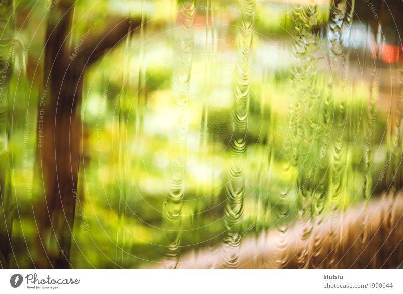 Die verschwommene Natur Leben Pflanze Wetter Regen Gras Wiese Straße Bewegung nass natürlich grün Rasen asiatisch urban Bus Unschärfe Bürgersteig Spaziergang