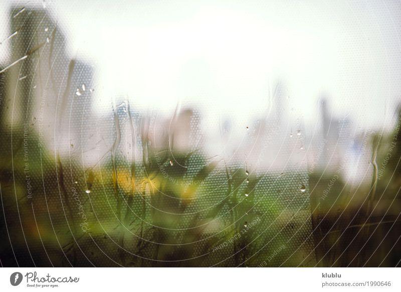 Das verschwommene Stadtbild Ferien & Urlaub & Reisen Architektur Straße Leben Bewegung Gebäude Regen Wetter modern Hochhaus Aussicht nass Bürgersteig Asien Höhe
