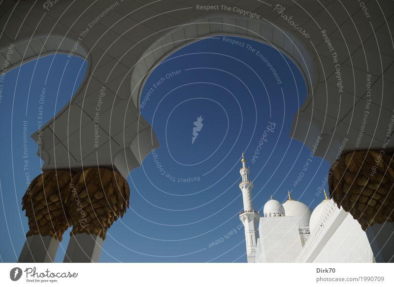 Scheich-Zayid-Moschee Reichtum Wolkenloser Himmel Sonnenlicht Frühling Klima Schönes Wetter Abu Dhabi Vereinigte Arabische Emirate Stadt Hauptstadt Bauwerk