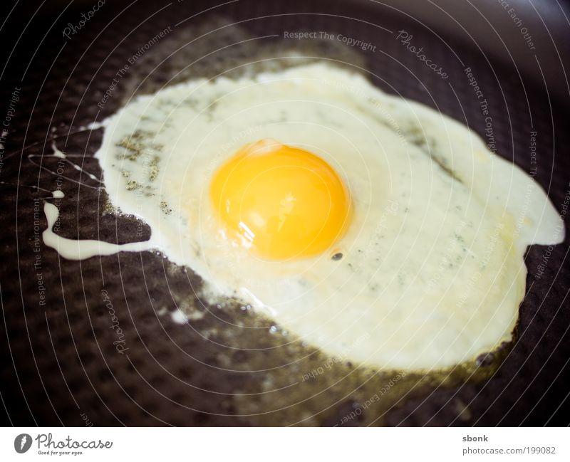 EiEiEi Lebensmittel Ernährung Frühstück Mittagessen Bioprodukte Küche Herd & Backofen Appetit & Hunger lecker Spiegelei Pfanne Butter Farbfoto Innenaufnahme